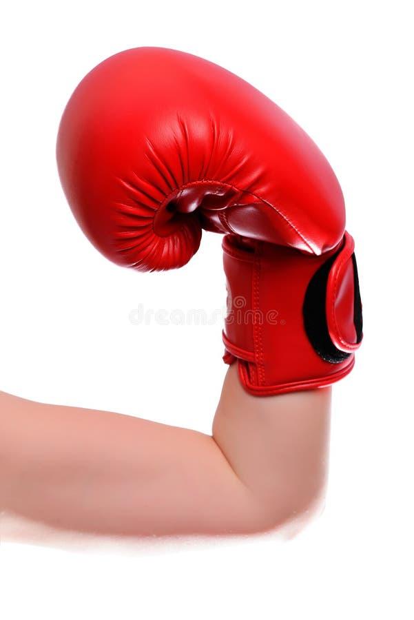 在红色拳击手套的被隔绝的被拉紧的手在白色背景 垂直的框架 免版税库存图片