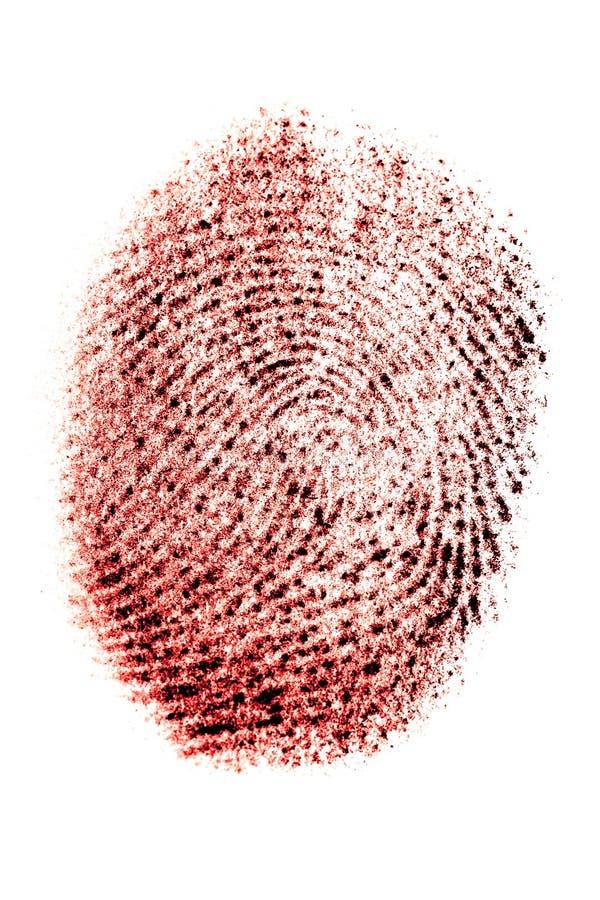 在红色的真正的指纹在白色背景,thumbprint,宏观 免版税库存照片