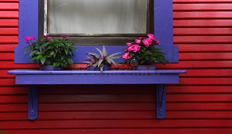 在红色的蓝色窗架封檐房子 免版税库存照片
