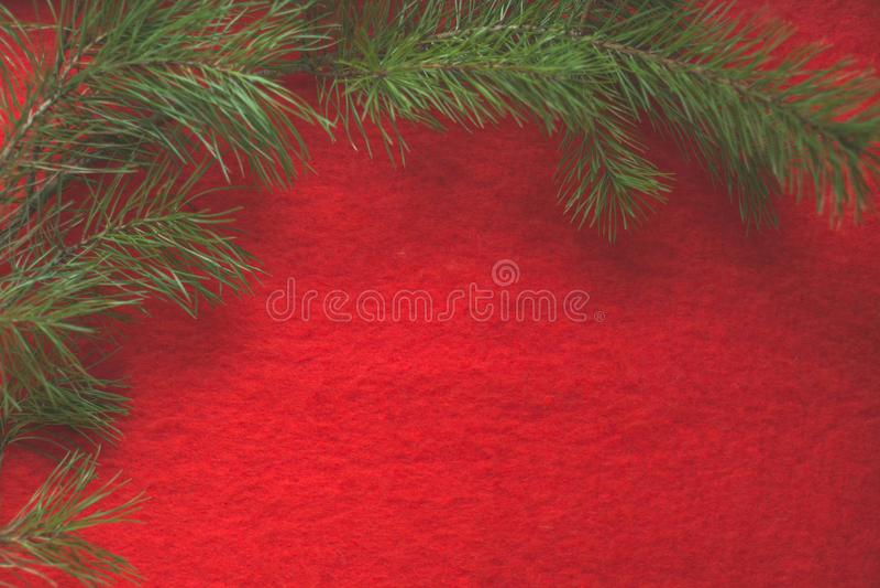 在红色羊毛背景的杉木分支 免版税库存照片