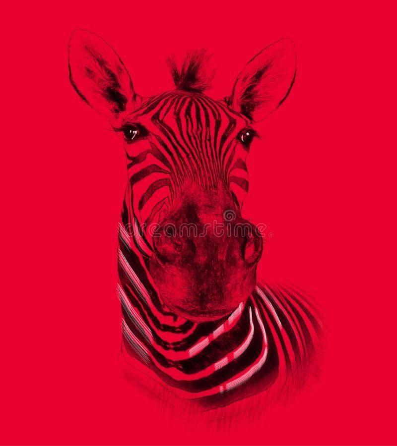 在红色背景的斑马 在凹道,剪影样式的例证 免版税库存图片