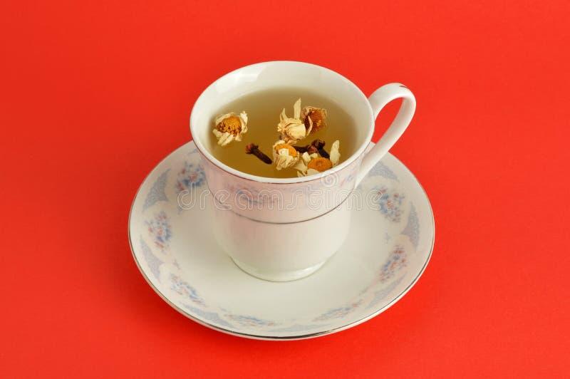 在红色背景的清凉茶 免版税图库摄影