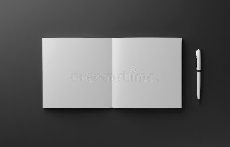 在红色背景隔绝的空白的照片拟真的书大模型, 3D例证 皇族释放例证