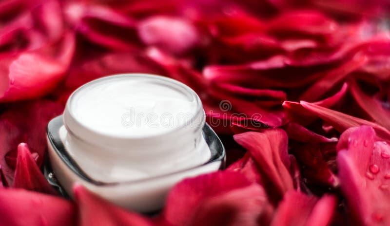 在红色花瓣和水背景,皮肤的自然科学的敏感skincare润肤霜奶油 库存图片