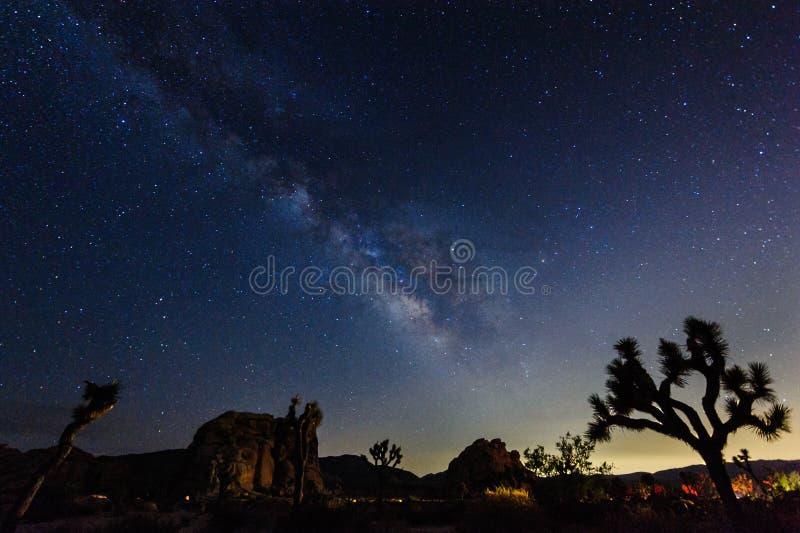 在约书亚树国家公园的银河 库存图片