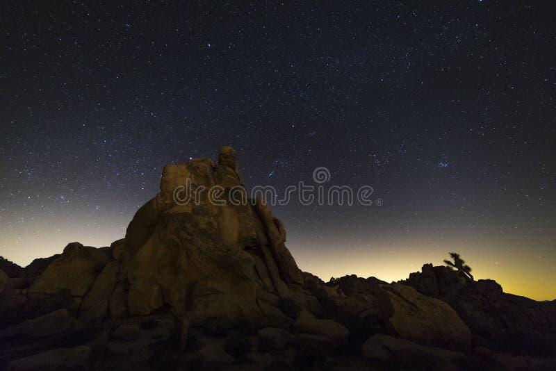 在约书亚树国家公园,加利福尼亚的夜空 免版税库存照片