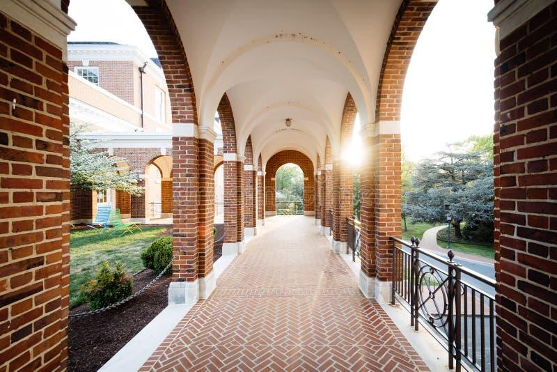 在约翰霍普金斯大学的被成拱形的走廊,在巴尔的摩, Maryl 库存图片
