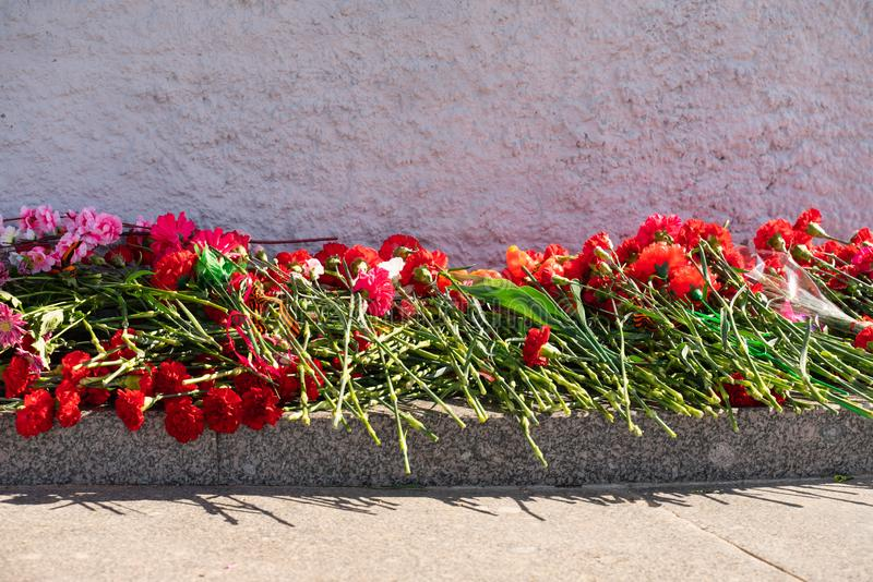 在纪念品的红色康乃馨花对第二次世界大战的下落的战士 免版税库存照片