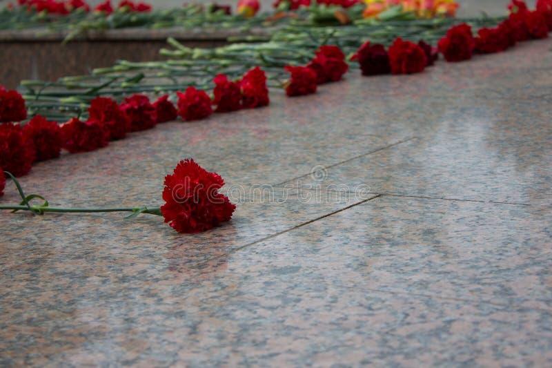 在纪念品的红色康乃馨 免版税库存图片