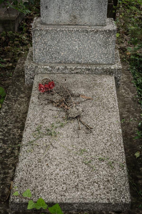 在纪念石头的花 图库摄影