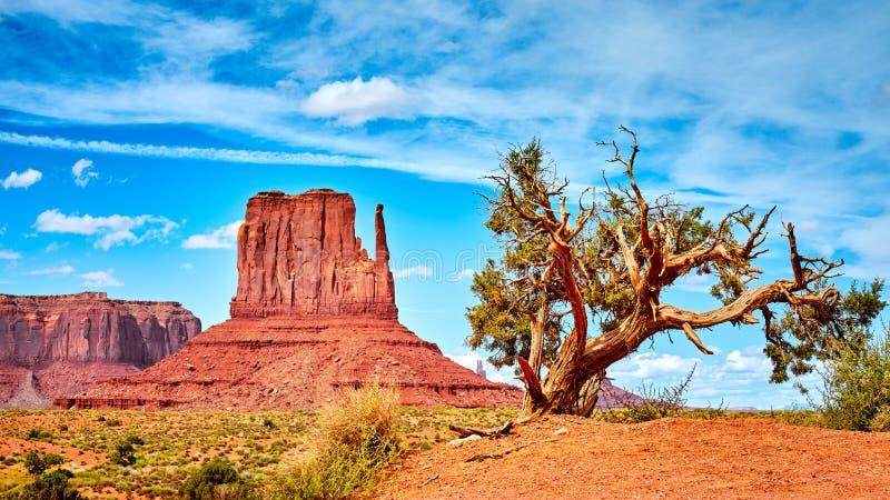 在纪念碑谷的西部风景,美国 免版税库存照片
