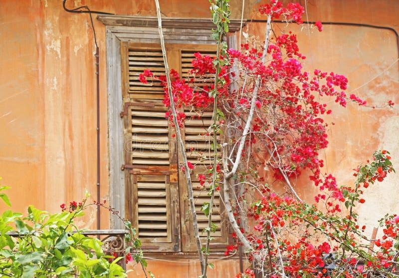 在纳夫普利翁镇阿尔戈利斯州希腊的传统老木窗口 免版税库存照片