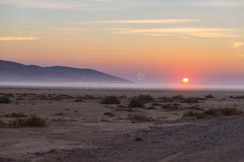 在纳米比亚沙漠的日出, roadtrip在美妙的Namib Naukluft国家公园,旅行目的地在纳米比亚,非洲 早晨 免版税图库摄影