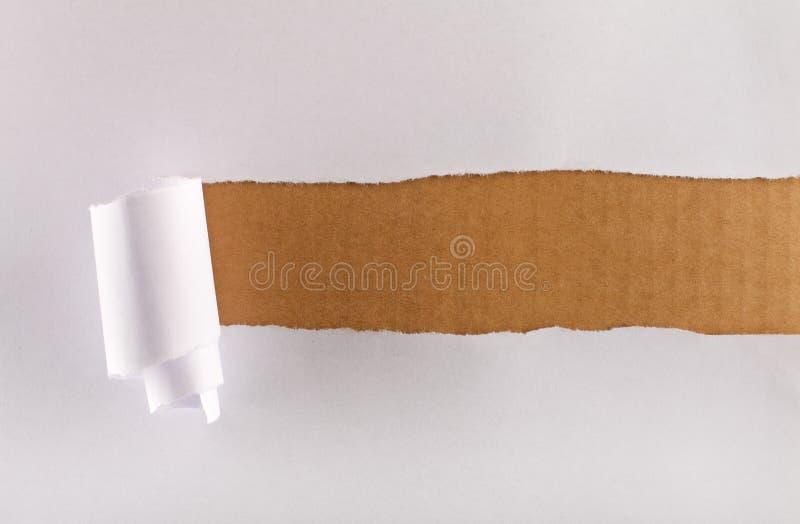 在纸张被撕毁的包裹的棕色纸板 库存图片