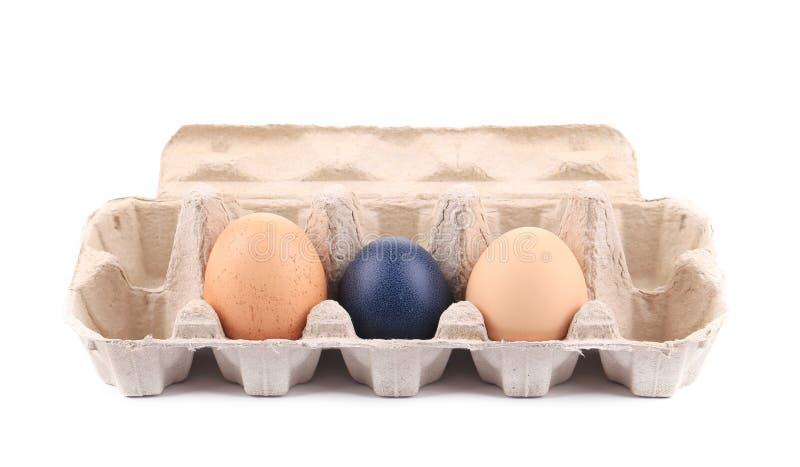 在纸板箱的复活节彩蛋 免版税库存图片