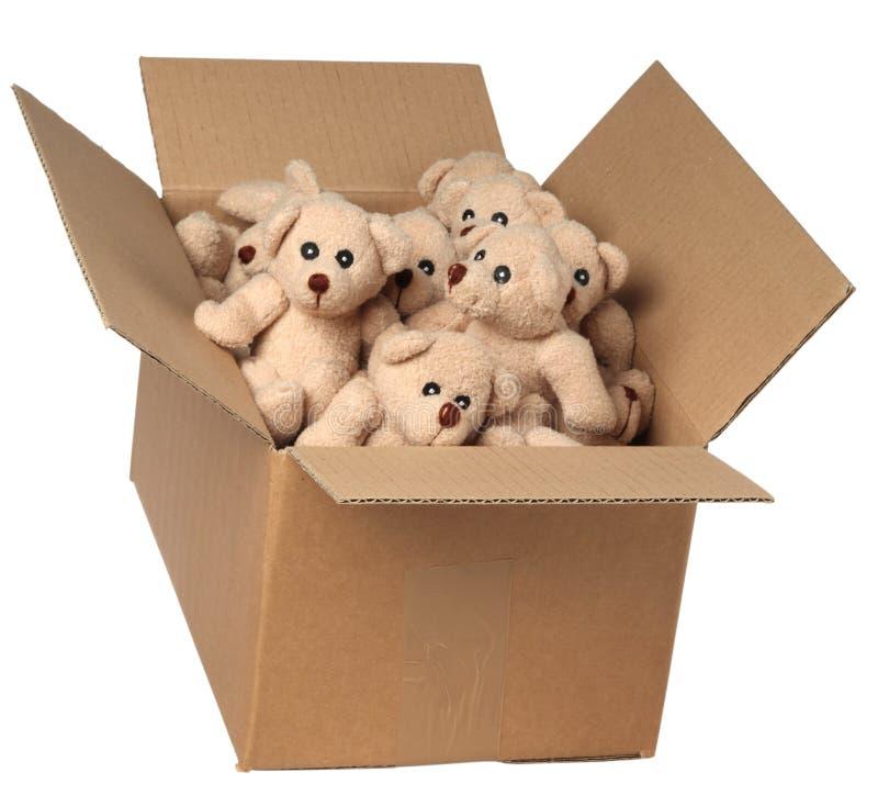 在纸板箱的玩具熊 库存照片