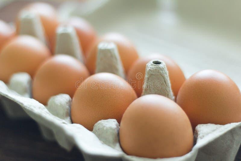 在纸板箱的鸡黄色鸡蛋,特写镜头 库存图片