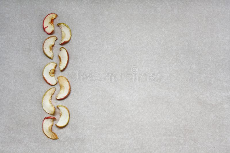 在纸的九个干苹果切片 库存照片