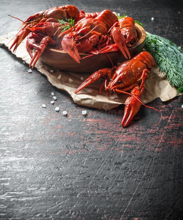 在纸的芬芳煮沸的小龙虾与一束莳萝 图库摄影