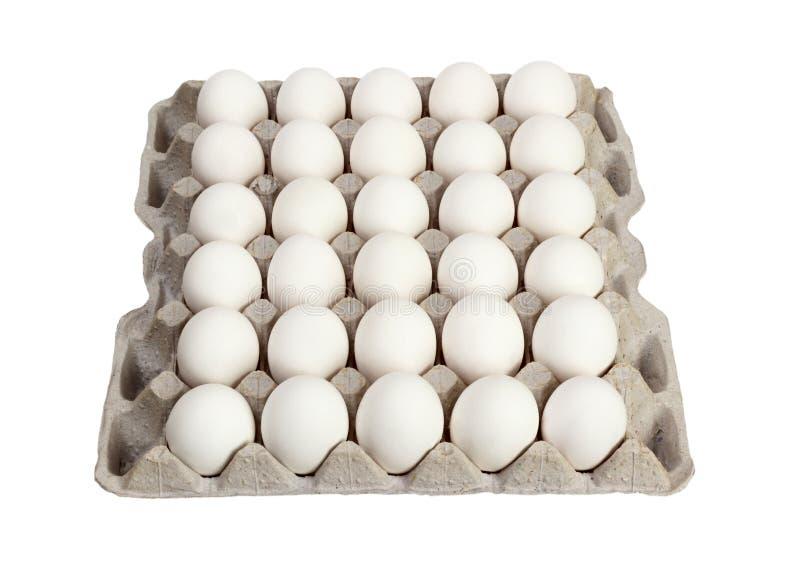 在纸盒包裹的鸡蛋在白色背景 库存图片