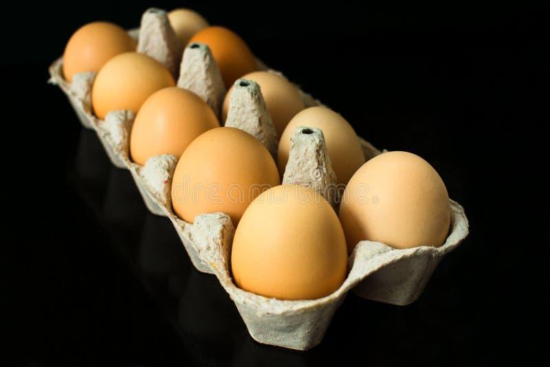 在纸盒的鸡蛋存放和运输的被隔绝的鸡鸡蛋在黑背景 免版税库存照片
