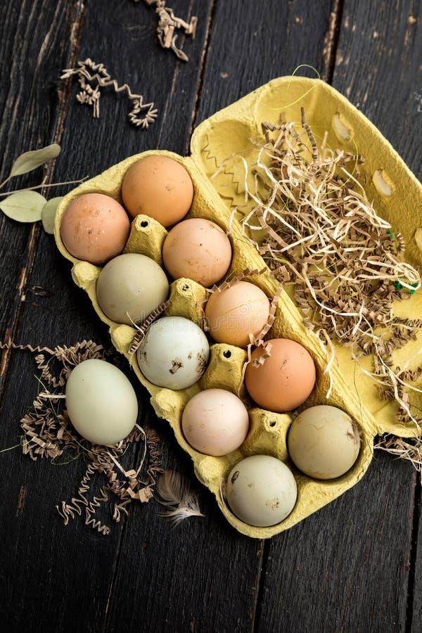 在纸盒的鸡蛋鸡蛋 免版税库存图片