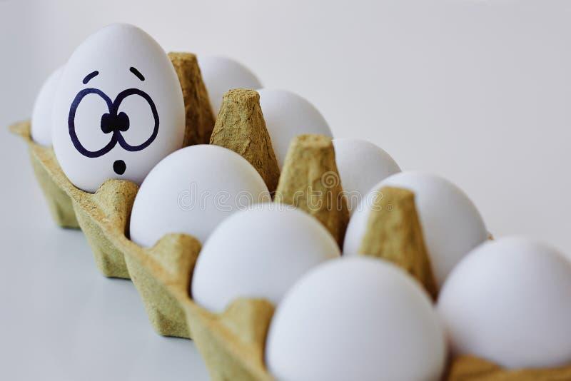 在纸盒箱子的惊奇的鸡蛋 免版税库存图片