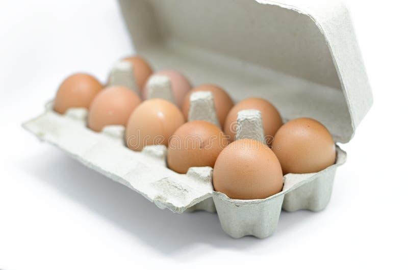 在纸盒箱子的鸡蛋 库存照片
