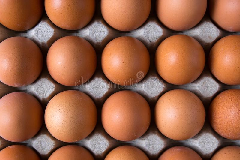 在纸箱的鸡鸡蛋 库存照片
