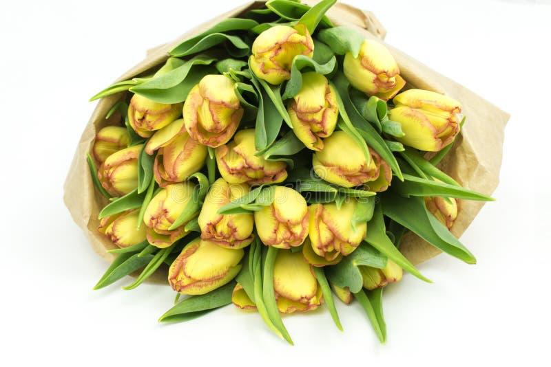 在纸花束的新鲜的郁金香 库存图片