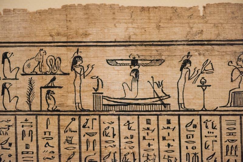在纸莎草的埃及象形文字的字符的 库存图片