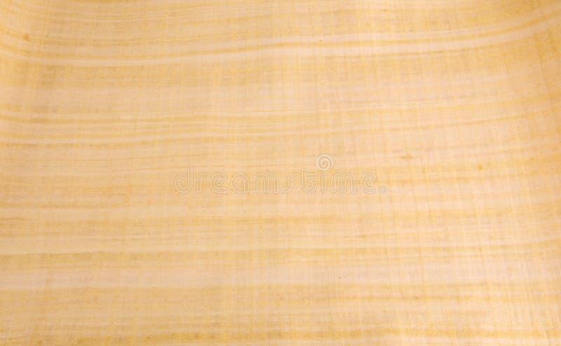 在纸莎草的埃及绘画 库存例证