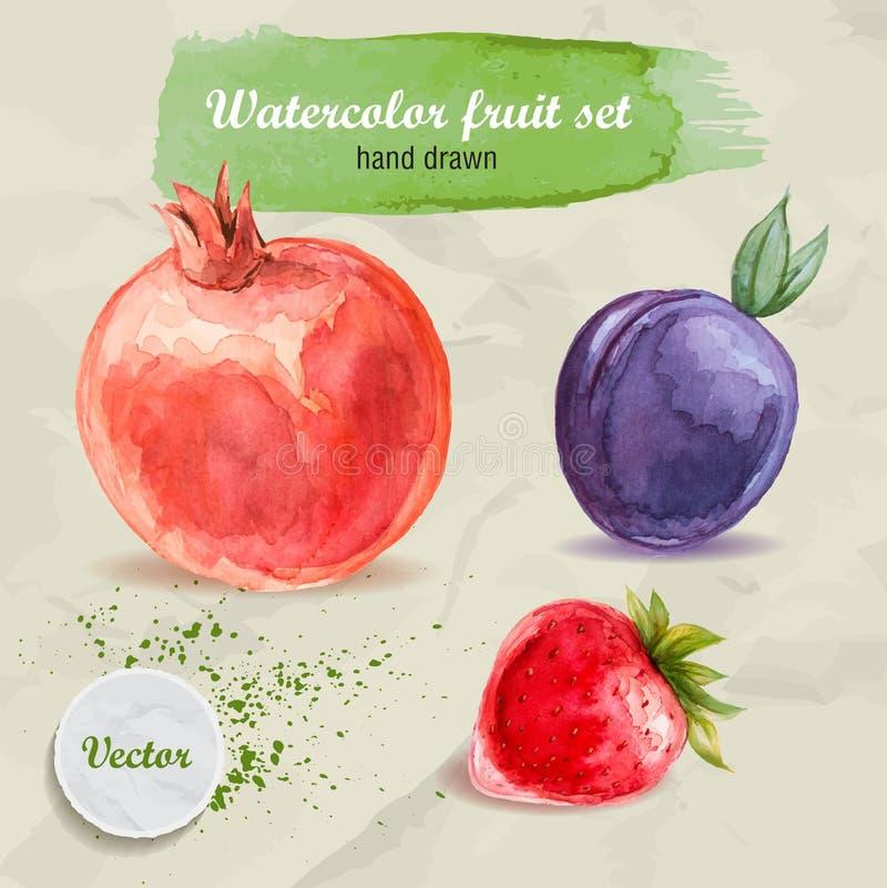 在纸设置的水彩手拉的果子 红色石榴、李子和草莓 向量例证