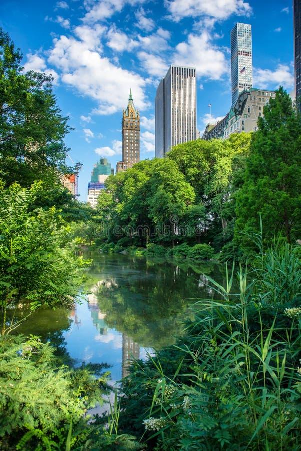 在纽约中央公园筑成池塘在夏天反对摩天大楼和蓝天 免版税库存照片