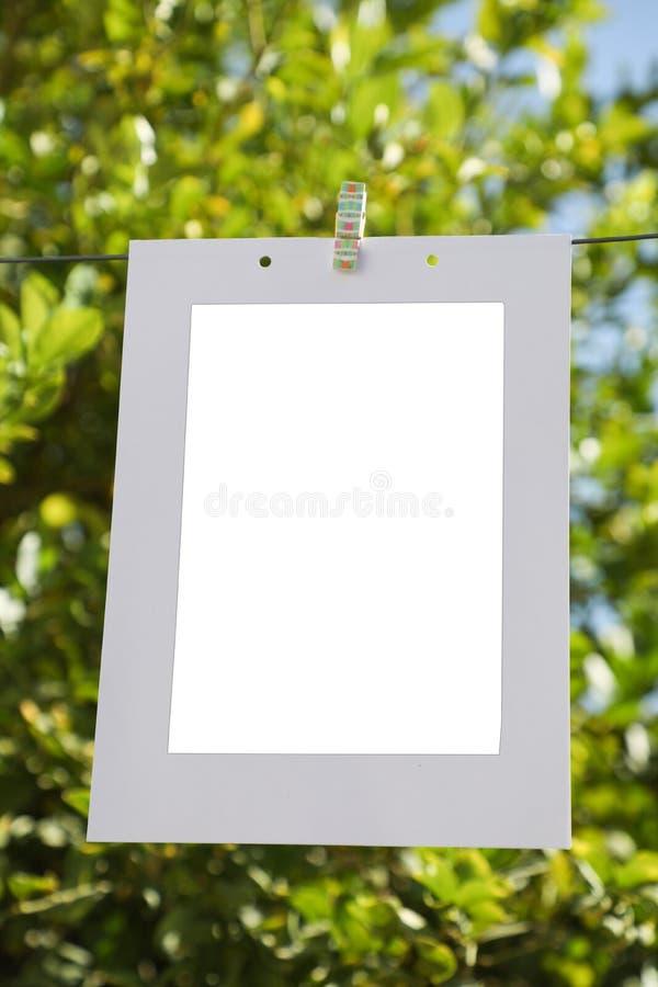 在绳子照片的相框,在柠檬树的背景 库存图片