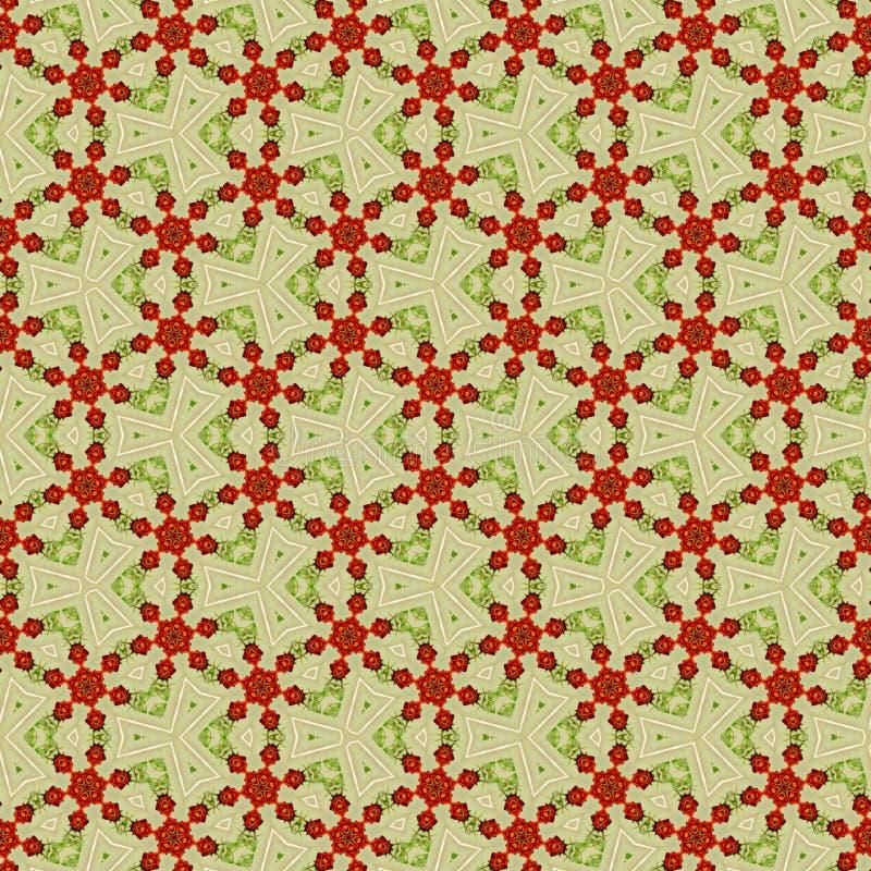 在维多利亚女王时代的样式的连续的样式与玫瑰 向量例证