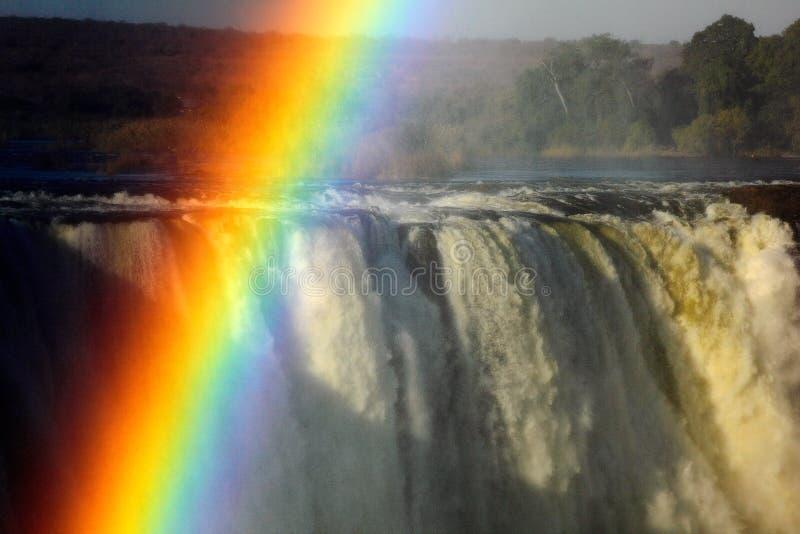 在维多利亚瀑布,瀑布在南非赞比西河的边界的在赞比亚之间和津巴布韦上的彩虹 Landsca 免版税图库摄影