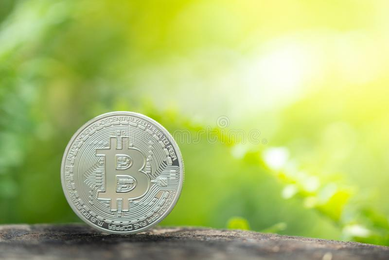 在绿叶背景的银色bitcoin 库存图片
