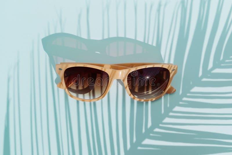 在绿松石背景的顶视图太阳镜与棕榈树,没人的阳光和阴影 旅行概念对象 库存图片