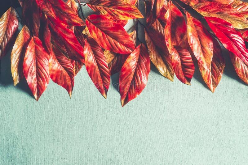 在绿松石背景,与拷贝空间的顶视图的明亮的橙红秋叶边界 秋天布局 免版税库存图片