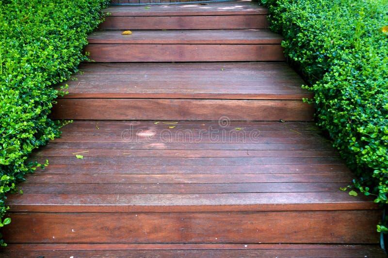 在绿色庭院的木台阶方式 免版税库存照片