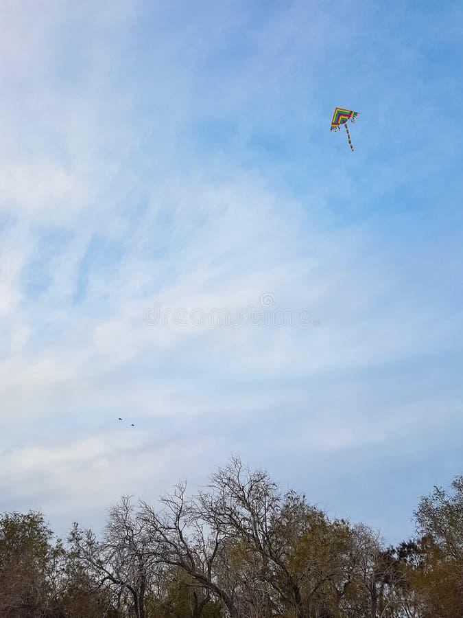 在绿色星期一,飞行在树,雅典, Greec上的五颜六色的风筝 库存图片