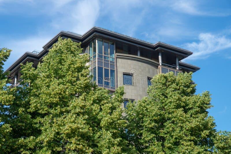 在绿色树后的现代大厦反对一个蓝色多云天空特写镜头 库存照片