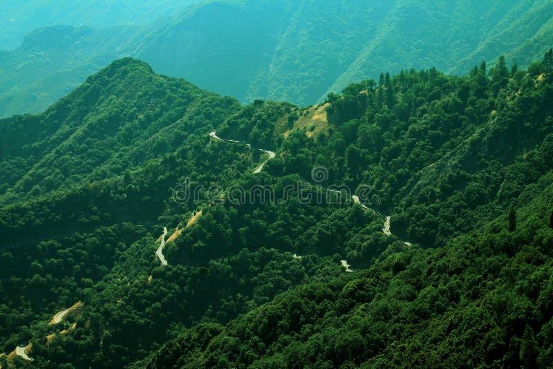 在绿色树木丛生的小山的弯曲道路与许多树 免版税库存图片