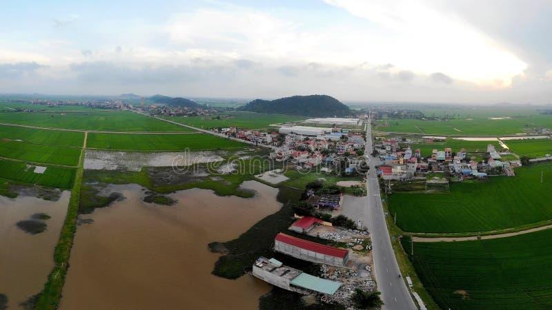 在绿色米领域中间的美丽的小村庄 库存照片