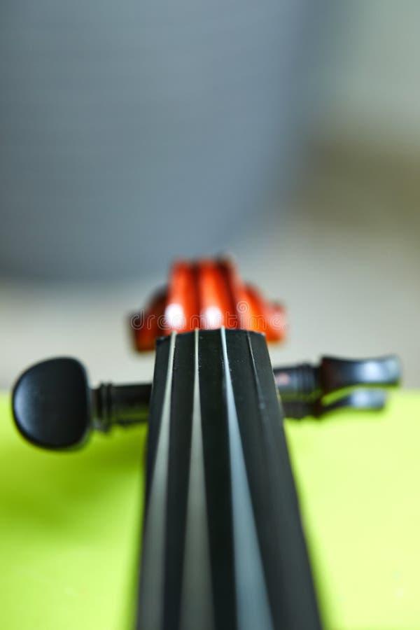 在绿色背景的小提琴头 免版税库存图片