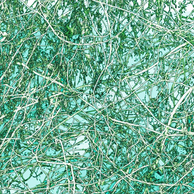 在绿色背景的抽象藤缠结 免版税库存图片