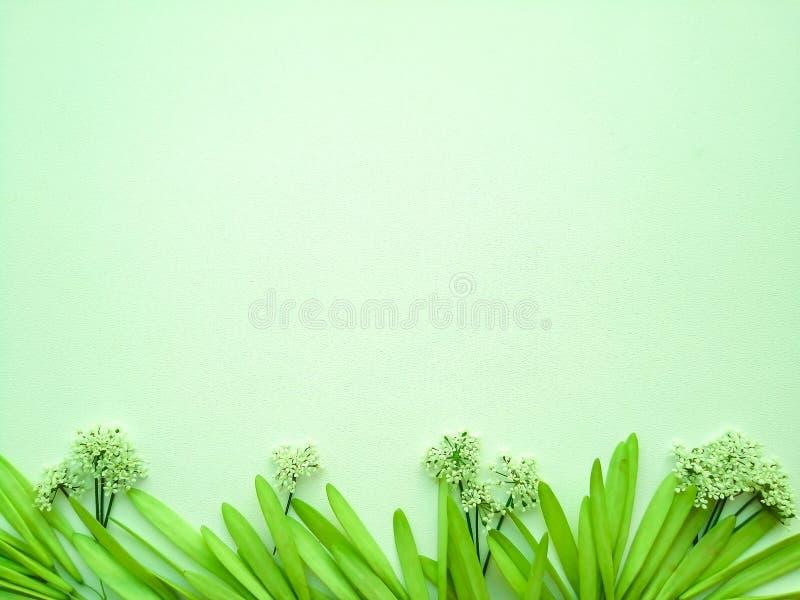 在绿色背景的花 库存图片