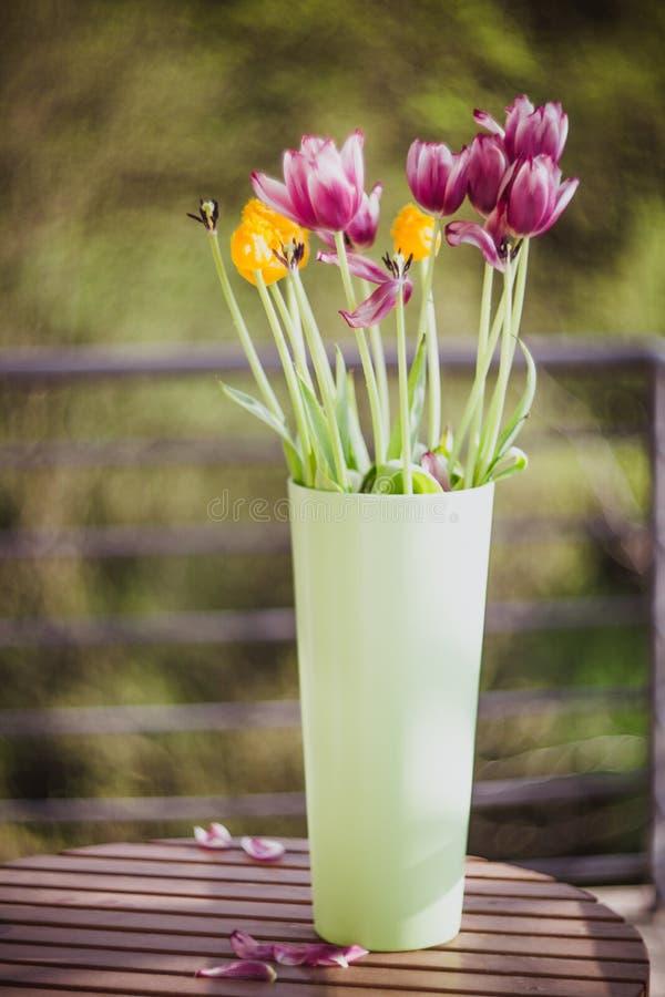 在绿色花瓶的美丽的紫色和黄色郁金香在外面木桌上 r 库存照片