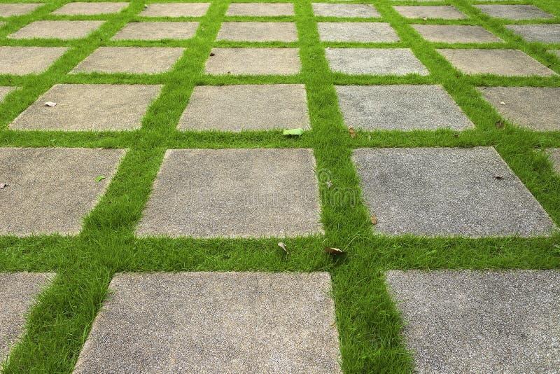 在绿色草坪的水泥走道 免版税图库摄影